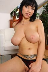 busty nude babes daisy lee