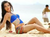 amy jackson latest hot hd wallpapers collections 15 jpg